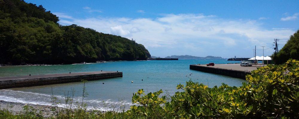 母島小中学校は東京の約1000キロ南に位置する小笠原諸島の中にある母島の豊かな自然に囲まれた場所にあります。